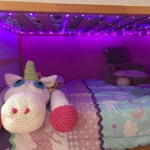 Pametne LED praznične lučke photo review
